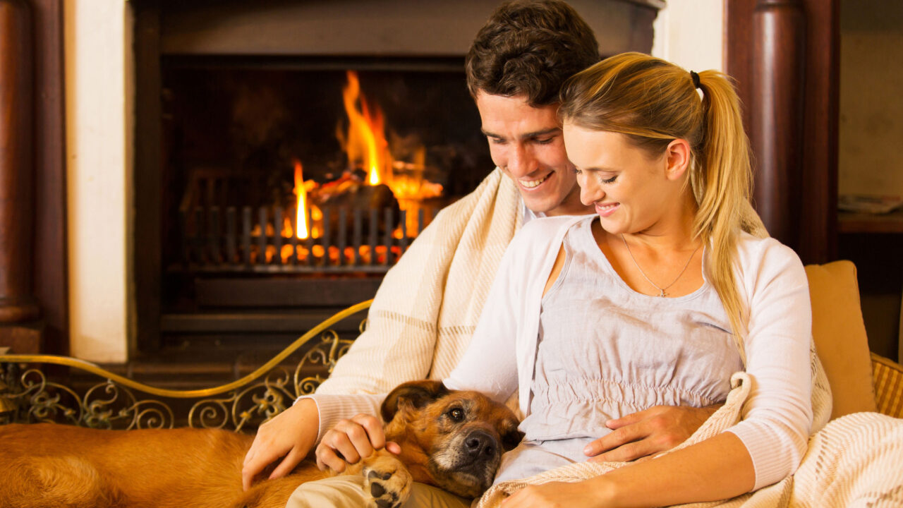 family and pets enjoy the warmth of a fireplace from fcpros